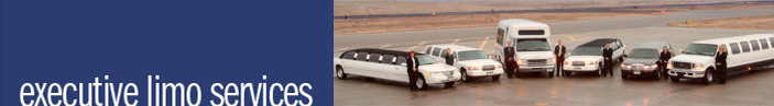 Executive Charleston Limousine